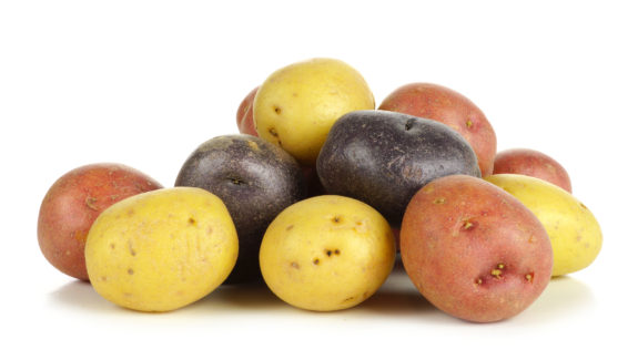 Pile of colorful little potatoes over white